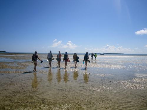 Turistar ryddar veg mot/på stranda.