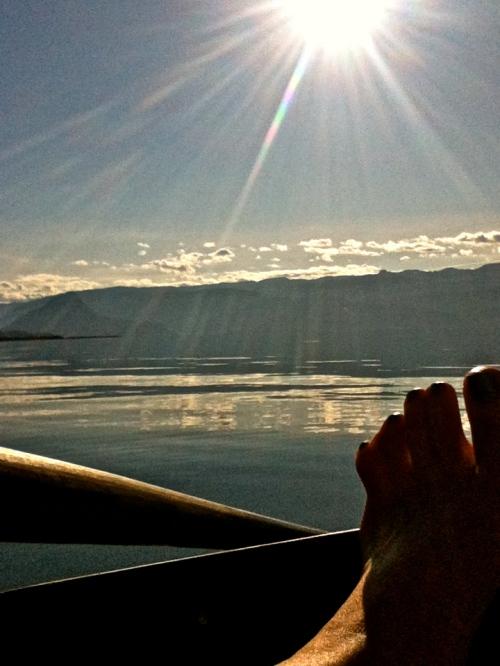 Morgonstund på fjorden